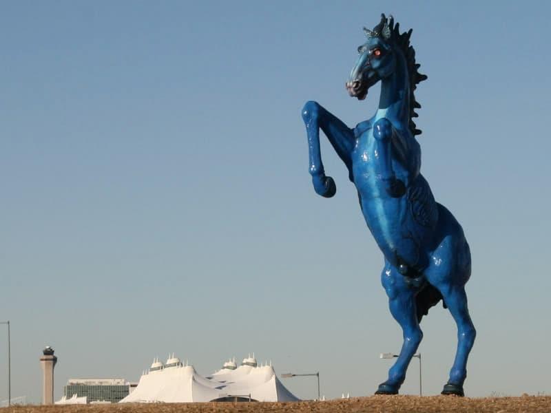blue mustang denver